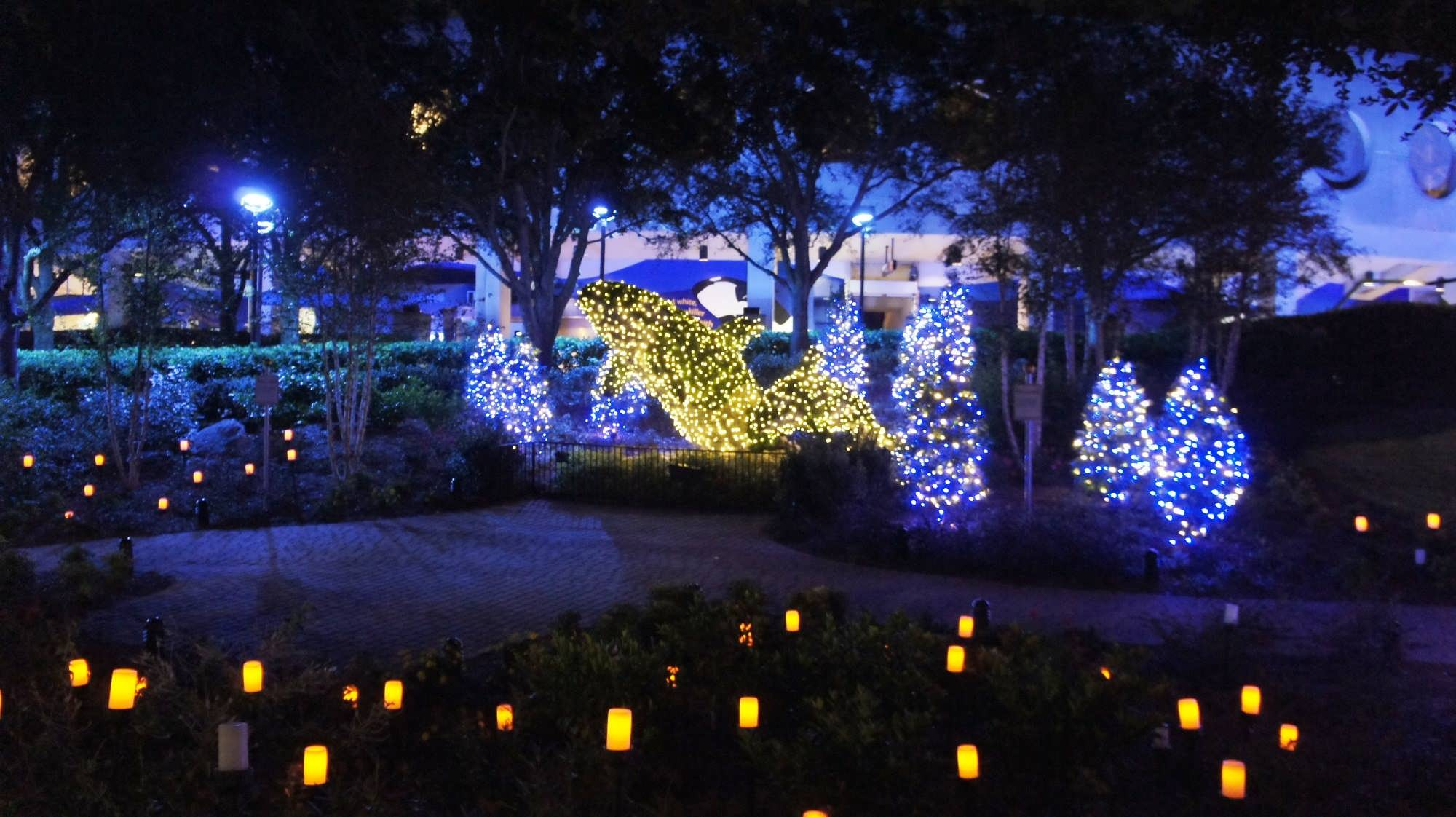 SeaWorld's Christmas Celebration 2011.