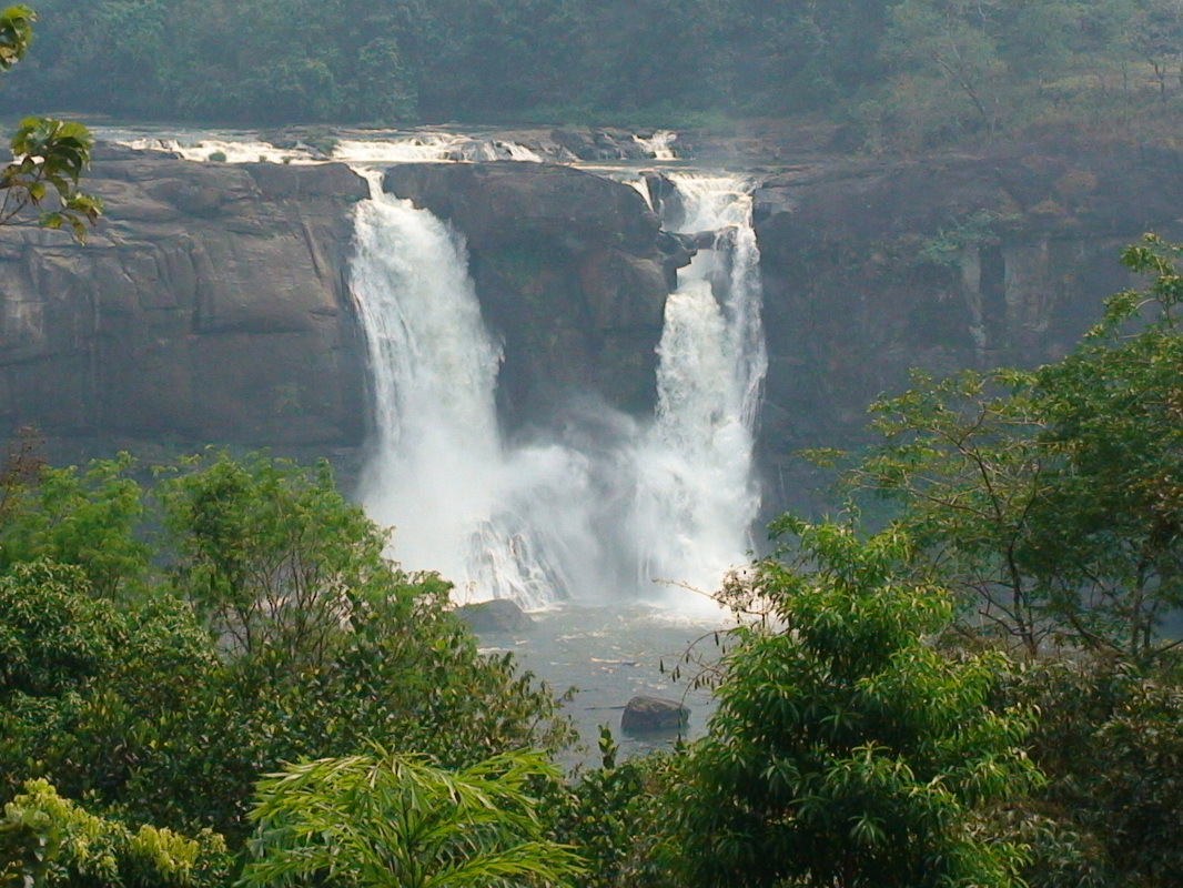 Athirappilly Tour From Cochin