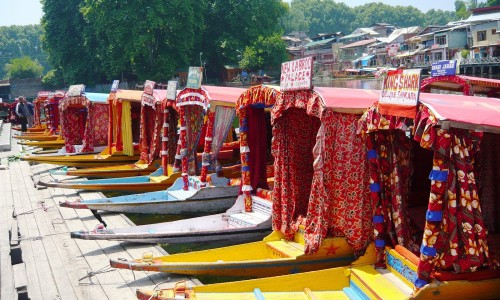 Shikaras in a Line at Dal Lake.